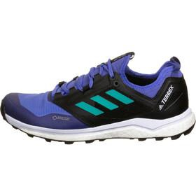 adidas TERREX Agravic XT GTX Zapatillas Mujer, blue